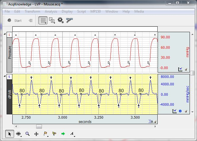 LVP hemodynamic data mouse