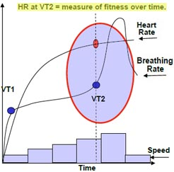 Ventilatorty Threshold - fitness over time